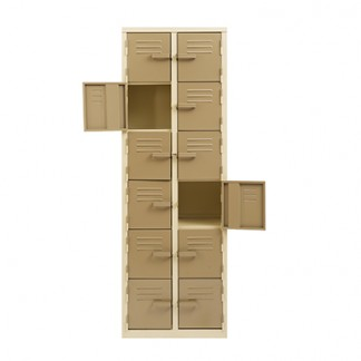 12 Doors Heavy Duty Steel Lockers